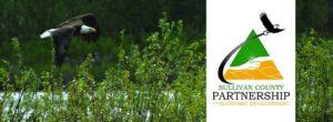 Sullivan County Partnership for Economic Development